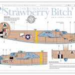 B-24D 'Strawberry Bitch'